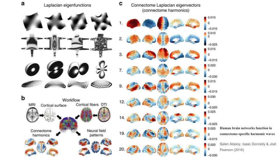The Neuroscience of Meditation: Four Models | Opentheory net